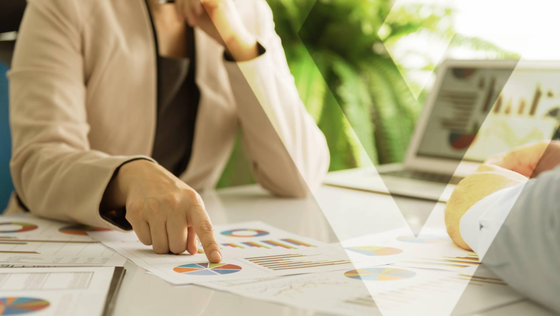 Business Enterprise Value—What Is It?